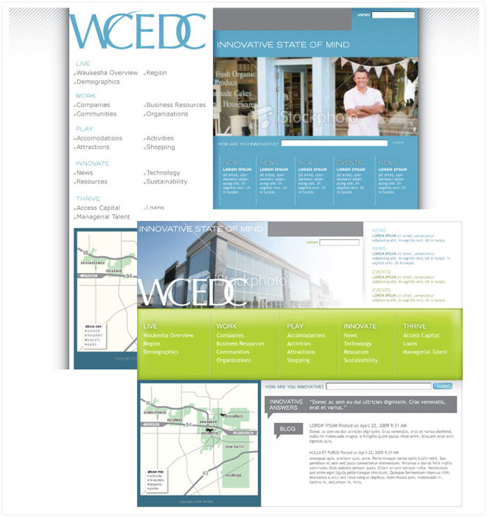 WCEDC website concepts