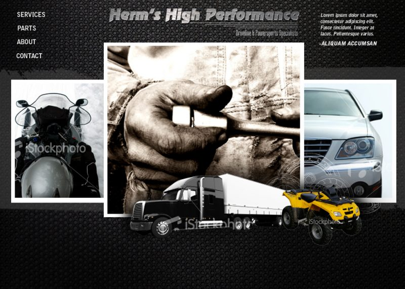 HermsPerformance web design concepts